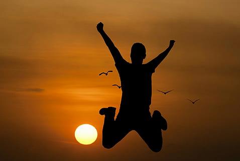 Sur le chemin de la sagesse & théories du Bonheur